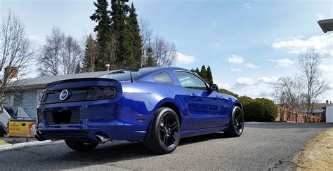 new from bc canadian mustang owners club ford mustang