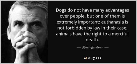 Milan Kundera The Unbearable Lightness Of Being by Milan Kundera Quote Dogs Do Not Have Many Advantages Over