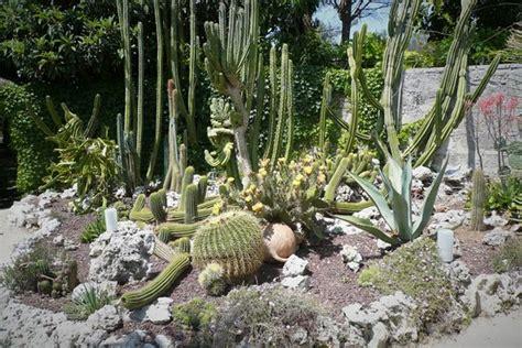 giardino botanico la cutura la cutura photo de la cutura giardino botanico