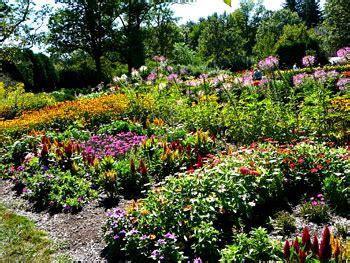 Flower Gardens In Nj Summer Flower Summer Flowers For Garden