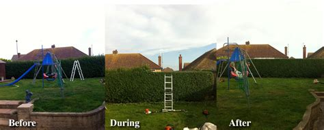 haircut deals worthing hedge cutting clean cut gardening services