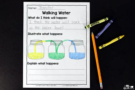 Walking Water Experiment Worksheet