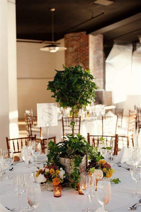 wedding topiary ideas 25 best ideas about topiary centerpieces on