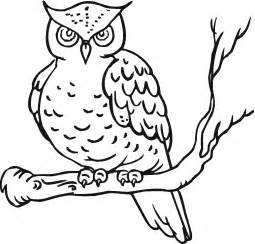 what color are owls free printable owl coloring pages for