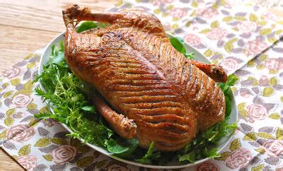 easy roast  duck recipe dartagnan