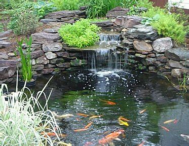 ponds fountains and garden waterfalls on pinterest koi ponds ponds and garden ponds