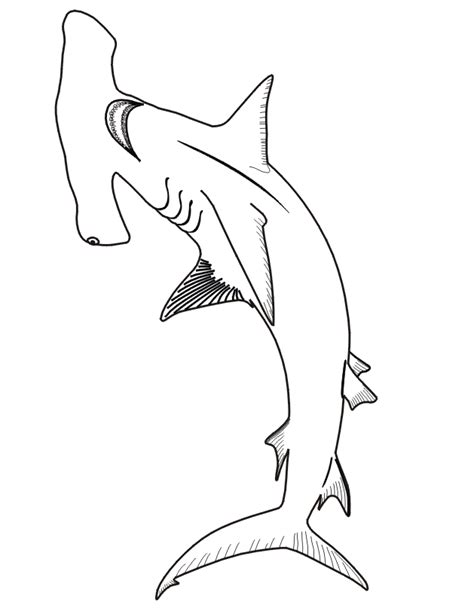 shark pictures to color shark coloring pages printable coloring home