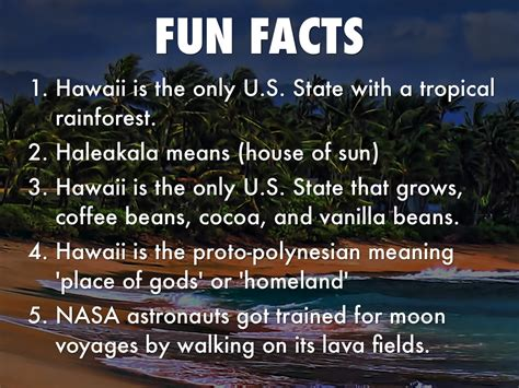 hawaiian rainforest fun facts