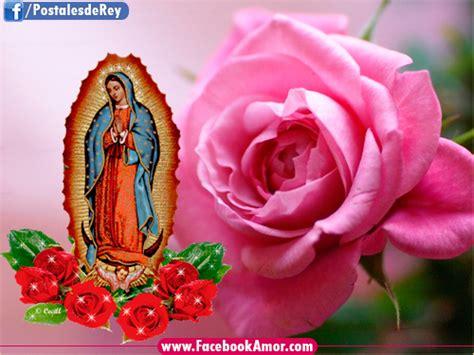 imagen virgen de guadalupe con rosas imagen de virgen de guadalupe para facebook im 225 genes