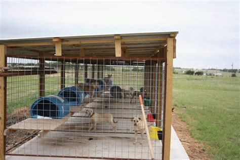 hunting dog houses image result for hunting dog kennel designs dog houses pinterest dog kennel