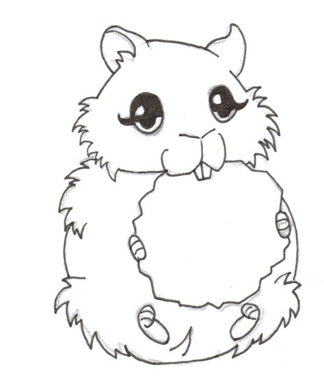 baby hamster coloring pages hamster coloring pages freecoloring4u com
