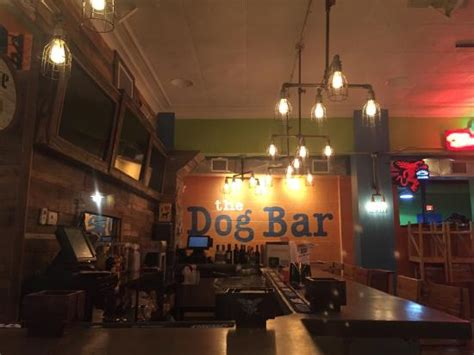 top dog bar nj the top 10 things to do near days inn st petersburg central
