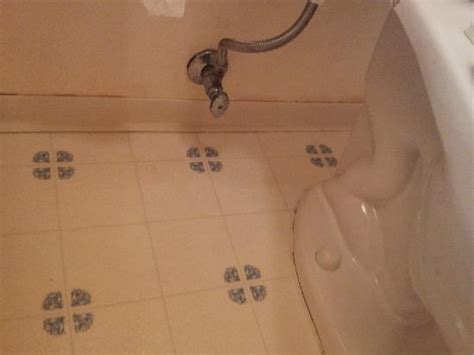 bathroom floor black mold included for 250