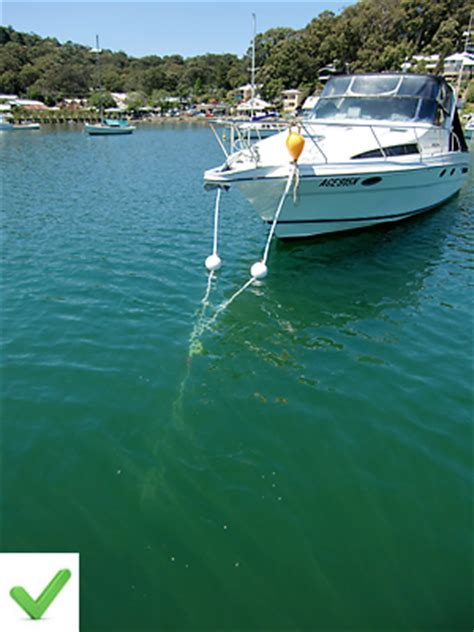 swing moorings swing mooring repairs no lifting