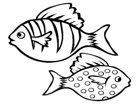 tropical fish coloring pages barriee