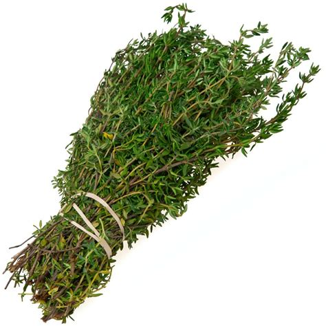 Kitchen In Spanish peaceful valley organic thyme seeds english 1 oz