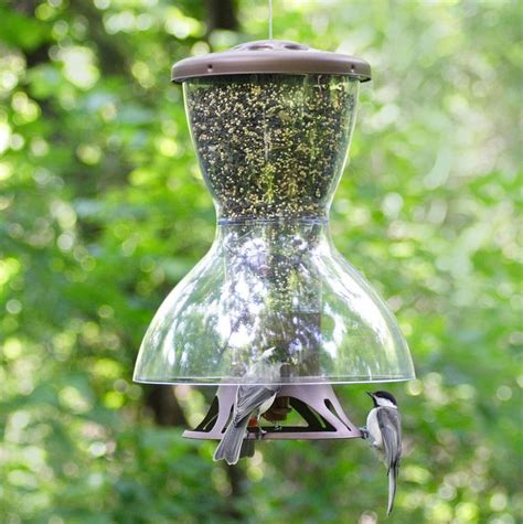 25 best ideas about anti squirrel bird feeder on