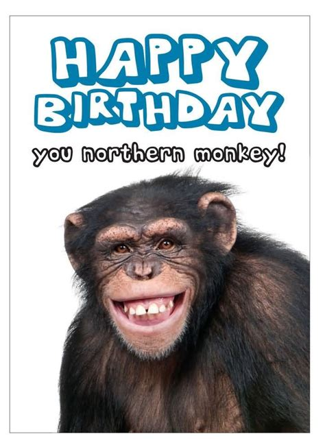funny birthday wishes images messages  quotes