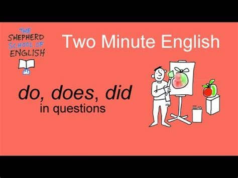 mis tutorial questions do does and did in questions youtube