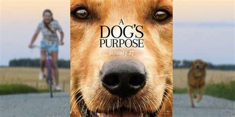 a s purpose boycott boycott du mes vies de chien graphiste sculptures photos ver vie