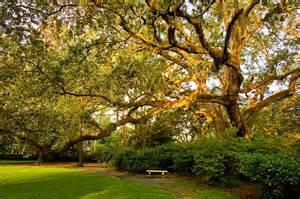 gardens state park florida usa