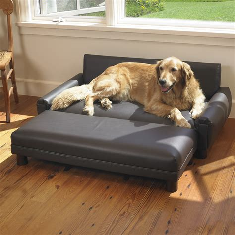 sofa dogs mission hills faux leather dog sofa reviews wayfair