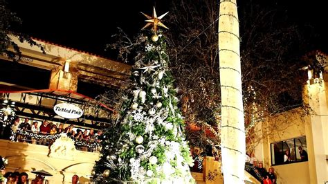 naples third street south 2014 christmas tree lighting