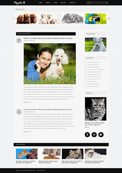 drupal themes glossary animals pets drupal template 50962 templates com