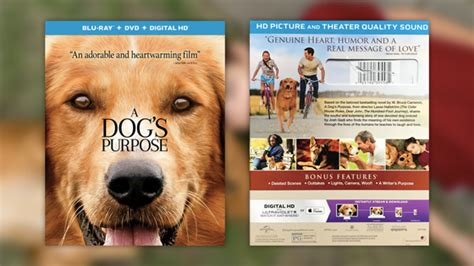 a s purpose rating quot a s purpose quot and dvd and digital hd combo pack review filmfed
