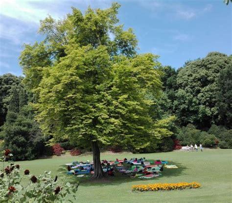 parco giardino sigurt 224 valeggio sul mincio verona