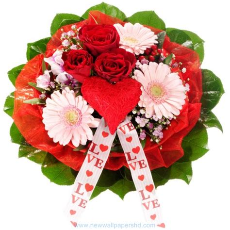 valentines day flower day flowers hd images photos pics hd walls