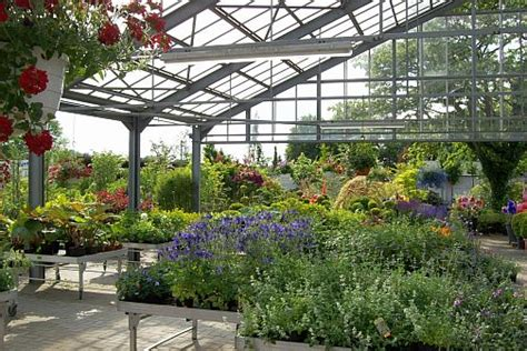 Giesebrecht Garten Und Pflanzen giesebrecht garten pflanzen l 252 nen niederaden landservice