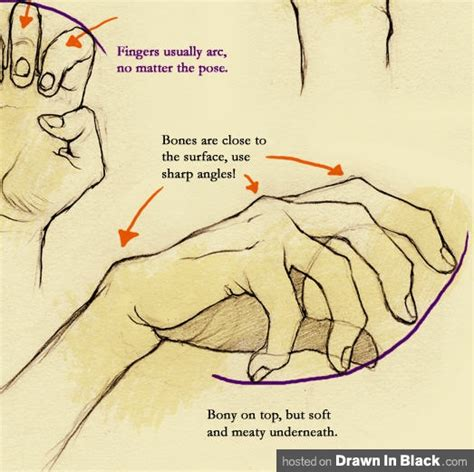 How To Draw Hands 35 Tutorials How Tos Step By Steps   amir s talk how to draw hands 35 tutorials how to s