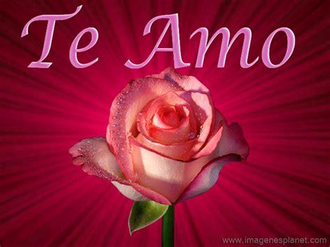 imagenes tiernas de amor con rosas imagenes tiernas con frases de amor im 225 genes de amor con