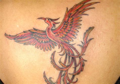 44 stupendous phoenix tattoo designs creativefan