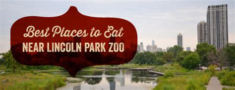places to eat in lincoln best places to eat near lincoln park zoo giordano s