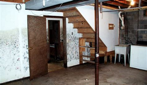 preventing mold in basement how to clean and prevent mold in the basement