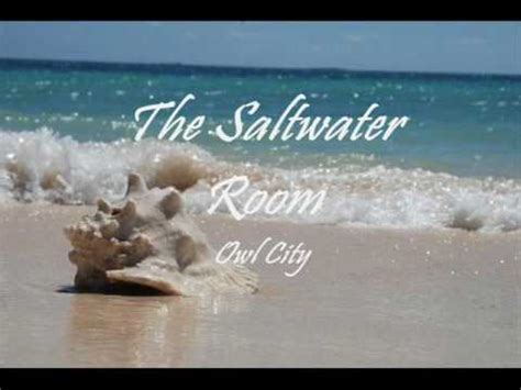 owl city the saltwater room the saltwater room owl city