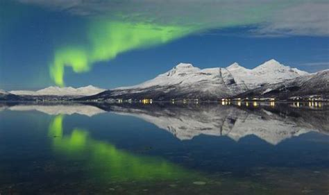 northern lights iceland november best things to do in iceland northern lights whale