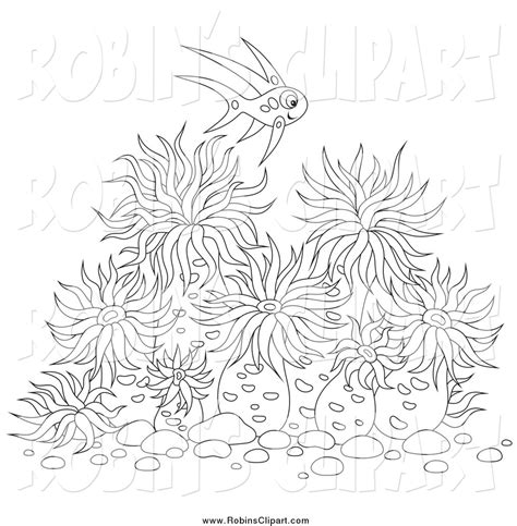 sea anemones colouring pages