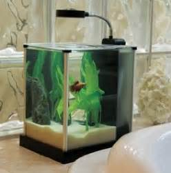 Amazon.com : Fluval SPEC Desktop Glass Aquarium, 2 gallon : Aquarium