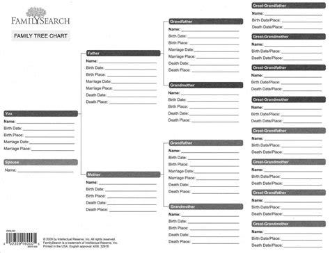 11 generation family tree template family tree template pedigree chart insssrenterprisesco