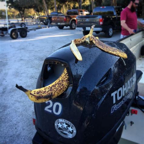 why are bananas bad luck on a boat are bananas really bad luck on boats pics true stories