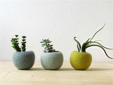 felt succulent planter hygge decor felted pod succulent