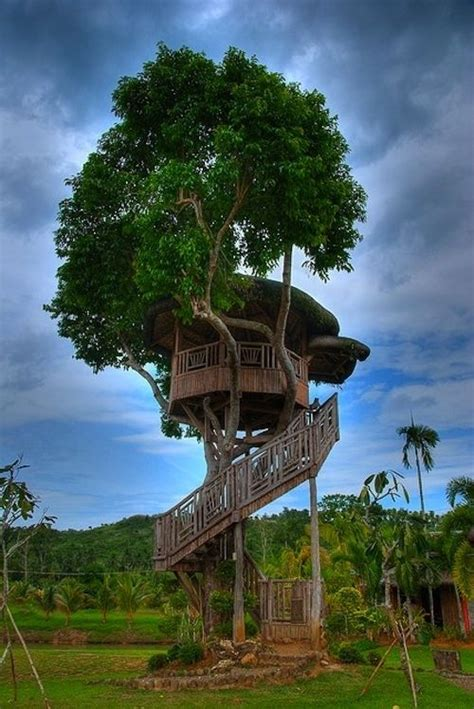 awesome tree house designs 15 awesome tree house design ideas page 6 of 15 99traveltips