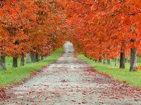 spirituality   autumn equinox fall equinox beliefnet