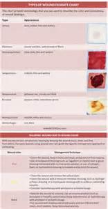 sanguineous color 25 best ideas about wound care on nursing