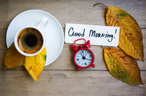 Perlak Goodmorning Warna morning wishes in श भ प रभ त क श भक मन य hindpatrika