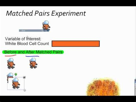 matched pairs design experiment exle matched pairs experiment youtube