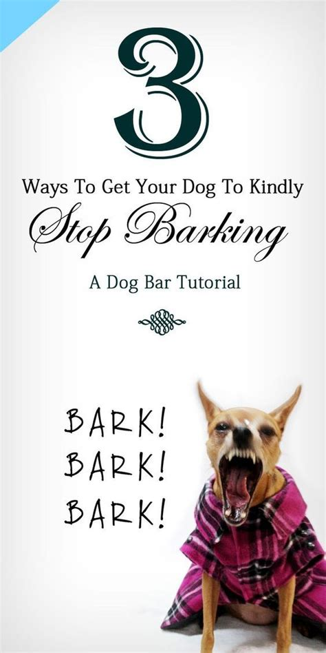 how to get to stop barking 25 b 228 sta stop from barking id 233 erna p 229 tips om att tr 228 na hunden